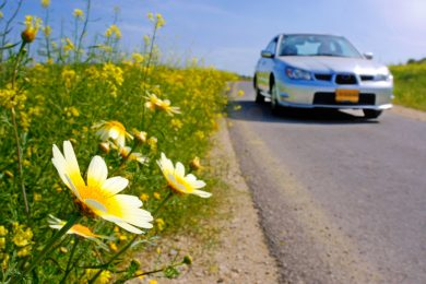 Spring Tune-Ups For Your Vehicle – What's the Process?